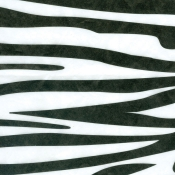 "Zebra Patterned Tissue Paper (20"" x 30"")"