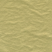 "Metallic Gold Tissue Paper (20"" x 30"")"